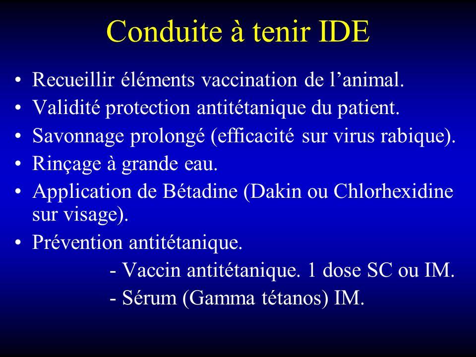 Conduite à tenir IDE Recueillir éléments vaccination de l'animal.