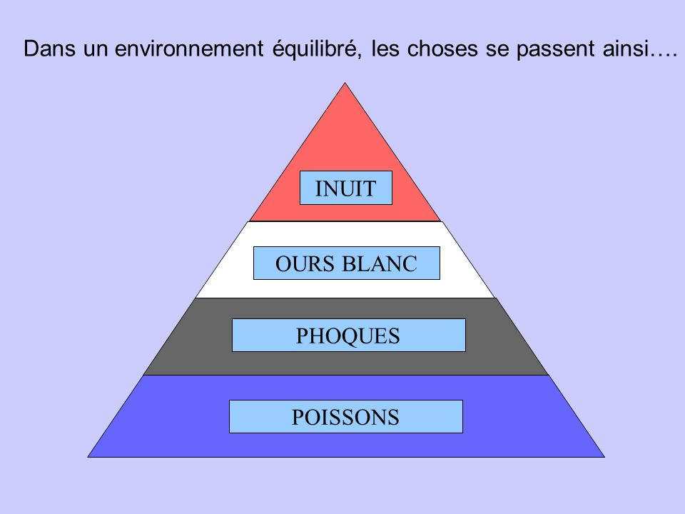 Dans un environnement équilibré, les choses se passent ainsi….