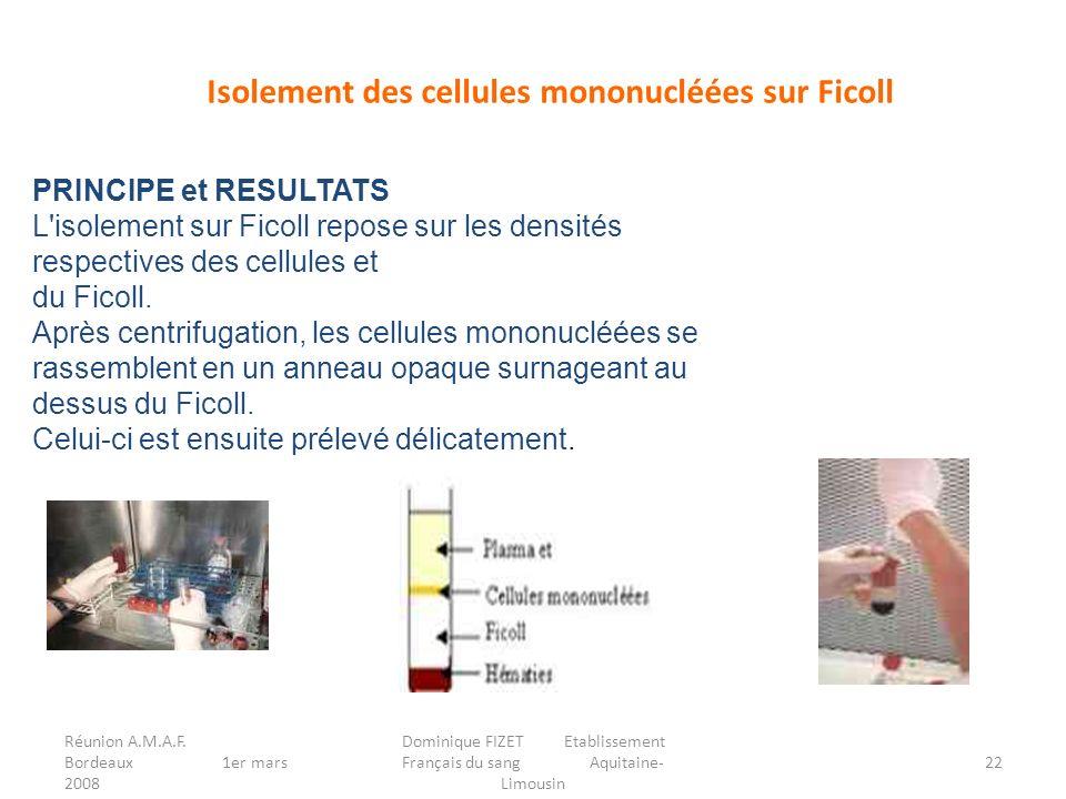 Isolement des cellules mononucléées sur Ficoll