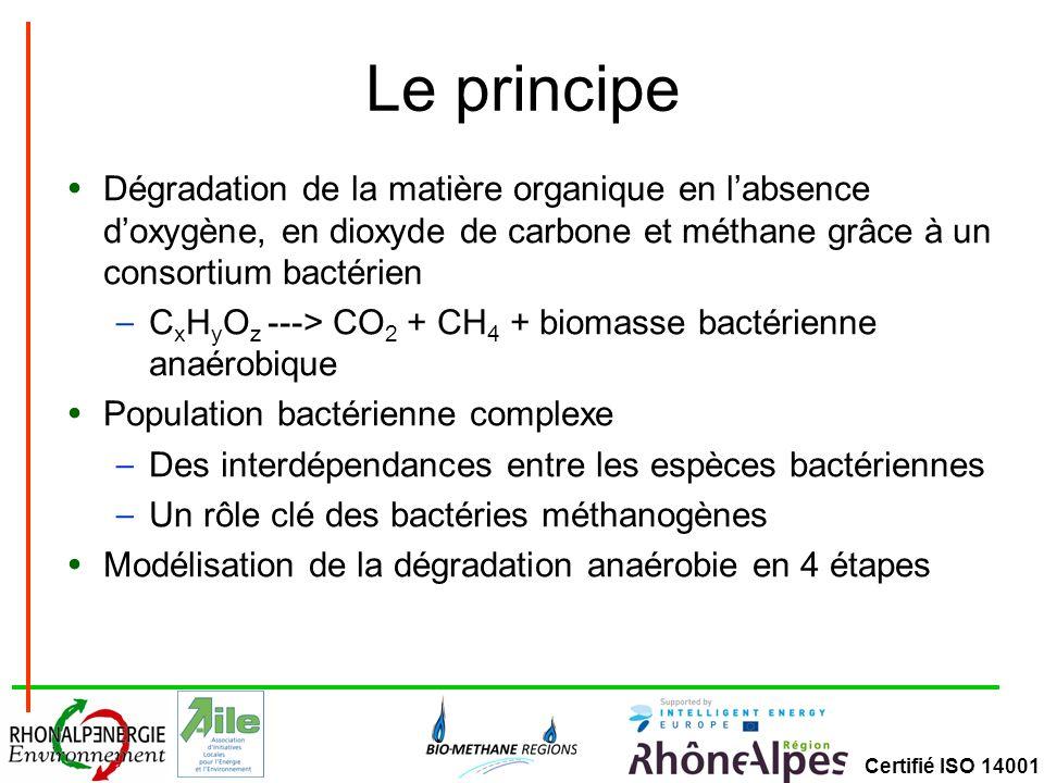 Le principe Dégradation de la matière organique en l'absence d'oxygène, en dioxyde de carbone et méthane grâce à un consortium bactérien.