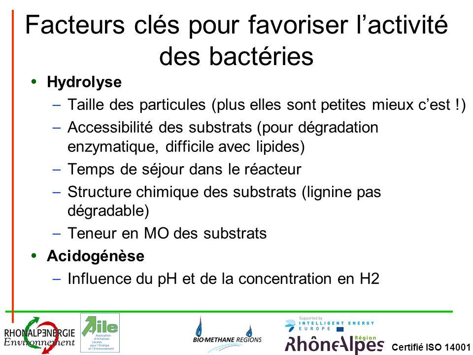 Facteurs clés pour favoriser l'activité des bactéries