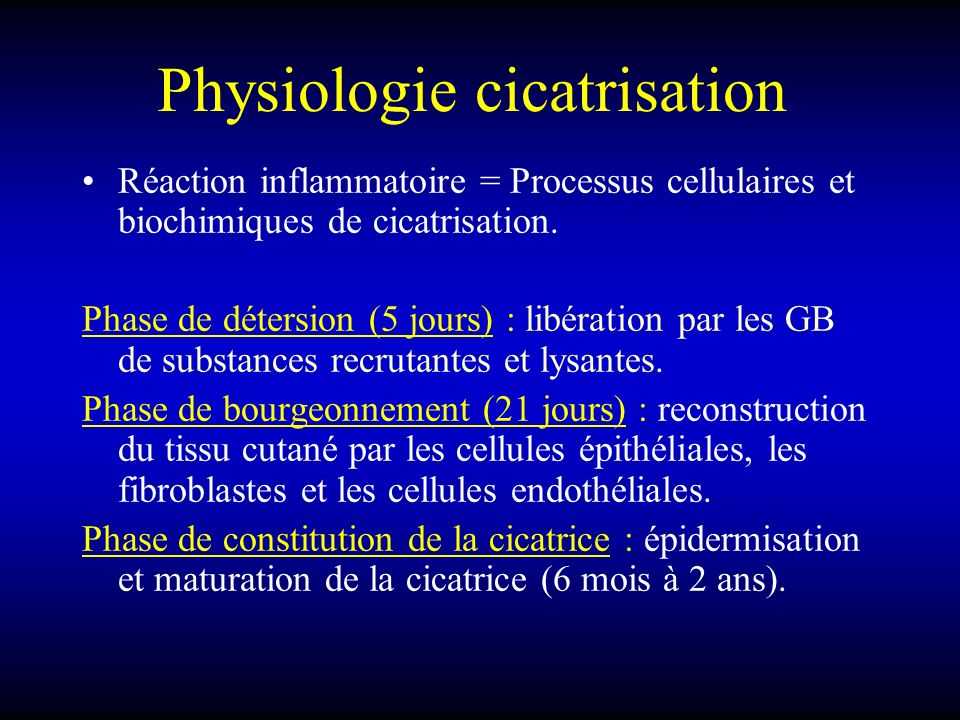 Physiologie cicatrisation