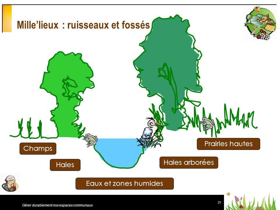 Mille'lieux : ruisseaux et fossés