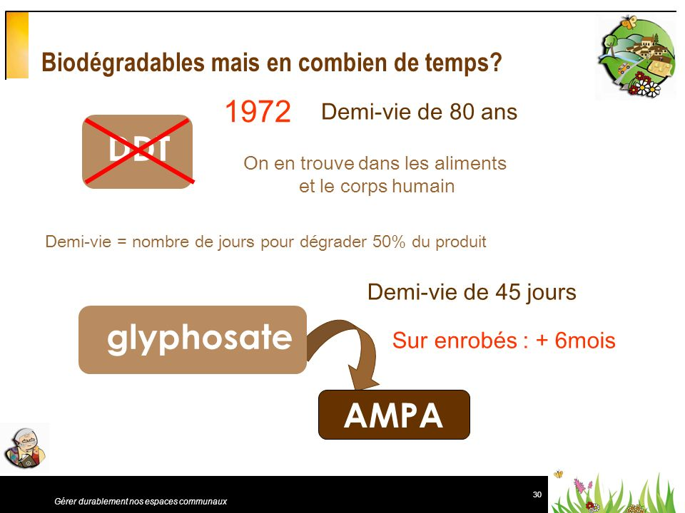 Biodégradables mais en combien de temps