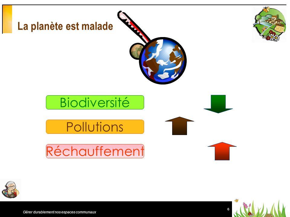 Biodiversité Pollutions Réchauffement La planète est malade