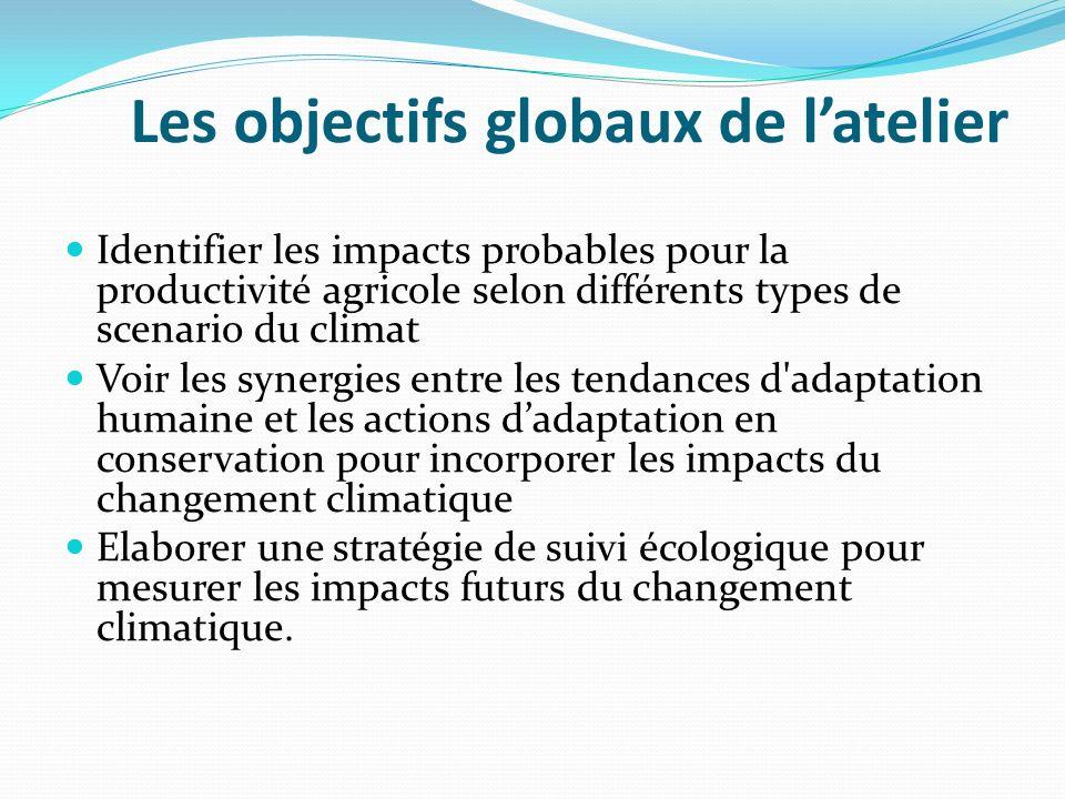 Les objectifs globaux de l'atelier