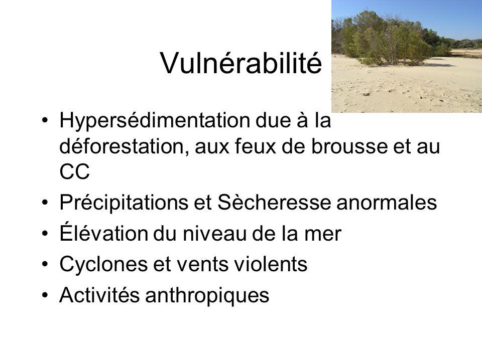 Vulnérabilité Hypersédimentation due à la déforestation, aux feux de brousse et au CC. Précipitations et Sècheresse anormales.