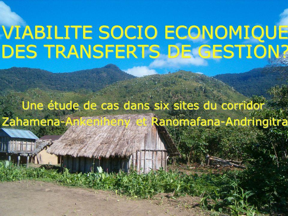 VIABILITE SOCIO ECONOMIQUE DES TRANSFERTS DE GESTION