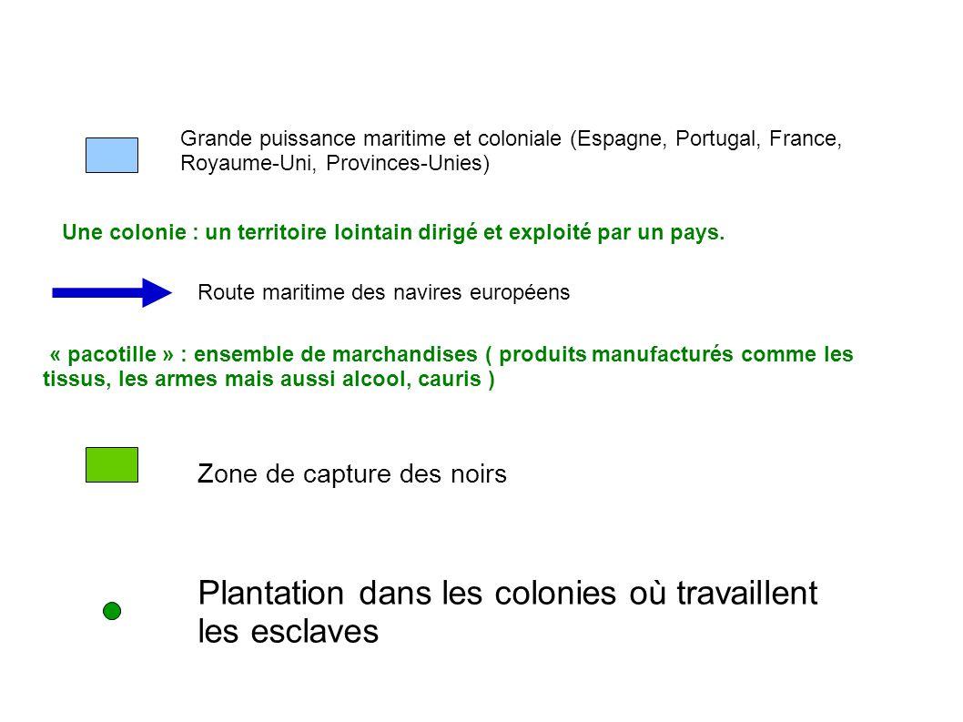 Plantation dans les colonies où travaillent les esclaves