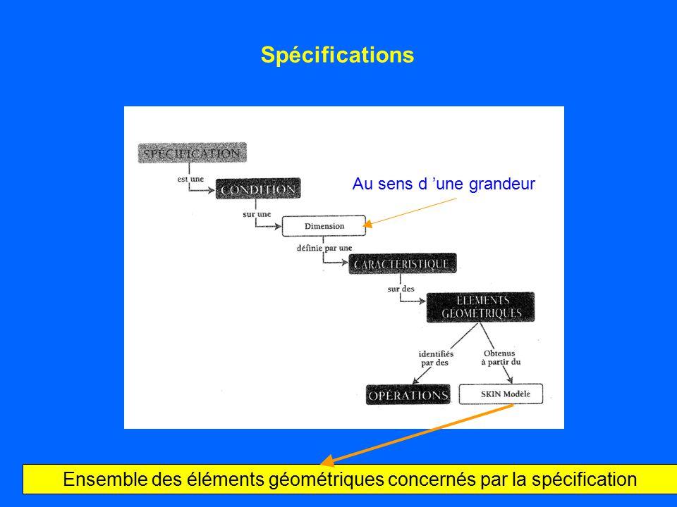 Ensemble des éléments géométriques concernés par la spécification