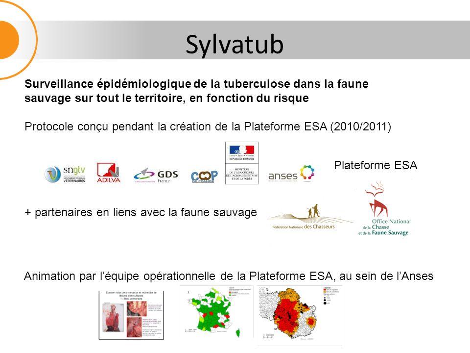 Sylvatub Surveillance épidémiologique de la tuberculose dans la faune sauvage sur tout le territoire, en fonction du risque.