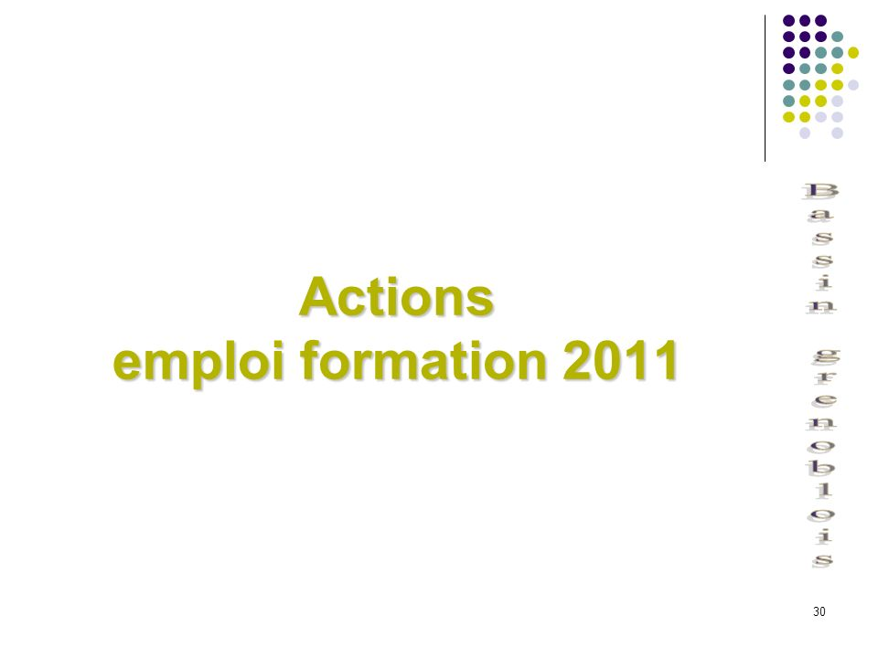 Actions emploi formation 2011