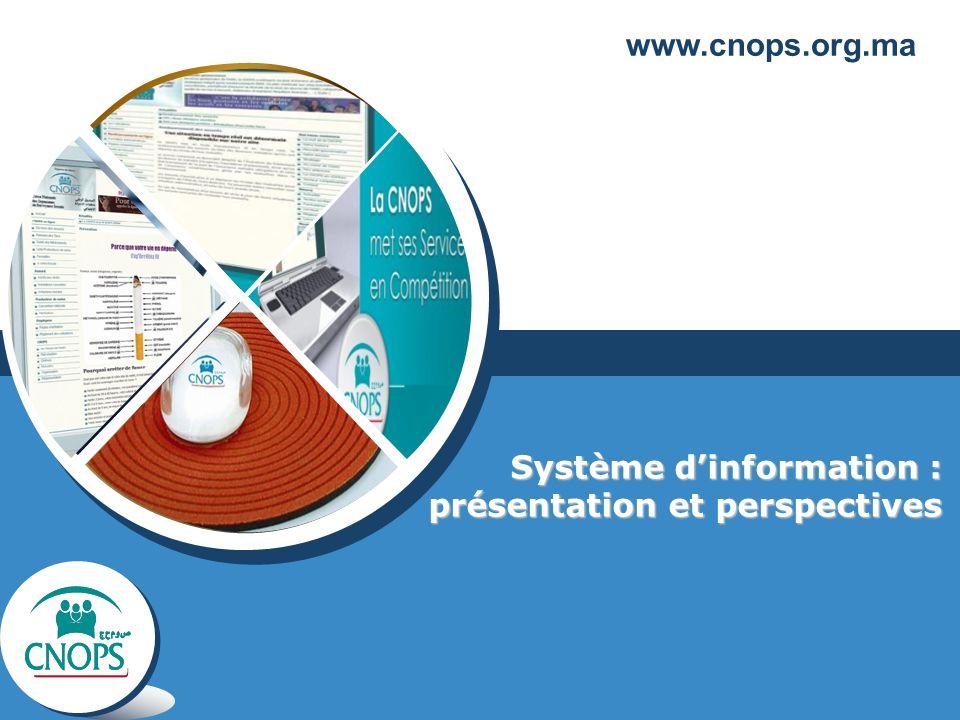 Système d'information : présentation et perspectives
