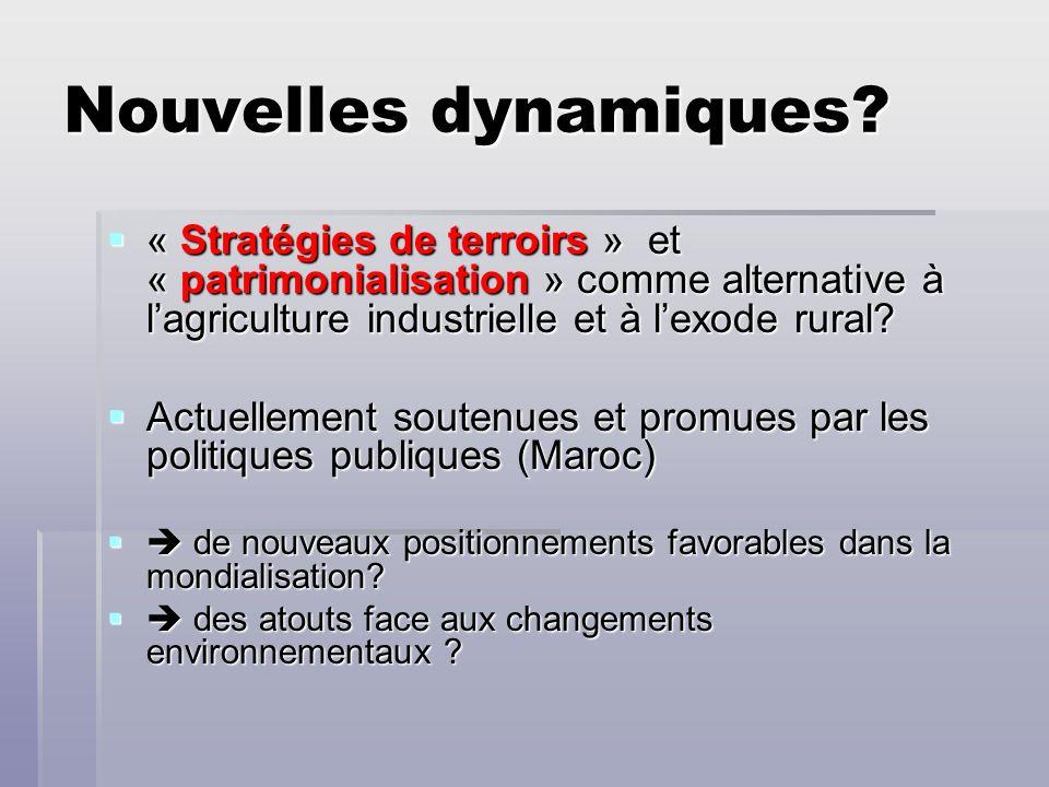 Nouvelles dynamiques « Stratégies de terroirs » et « patrimonialisation » comme alternative à l'agriculture industrielle et à l'exode rural