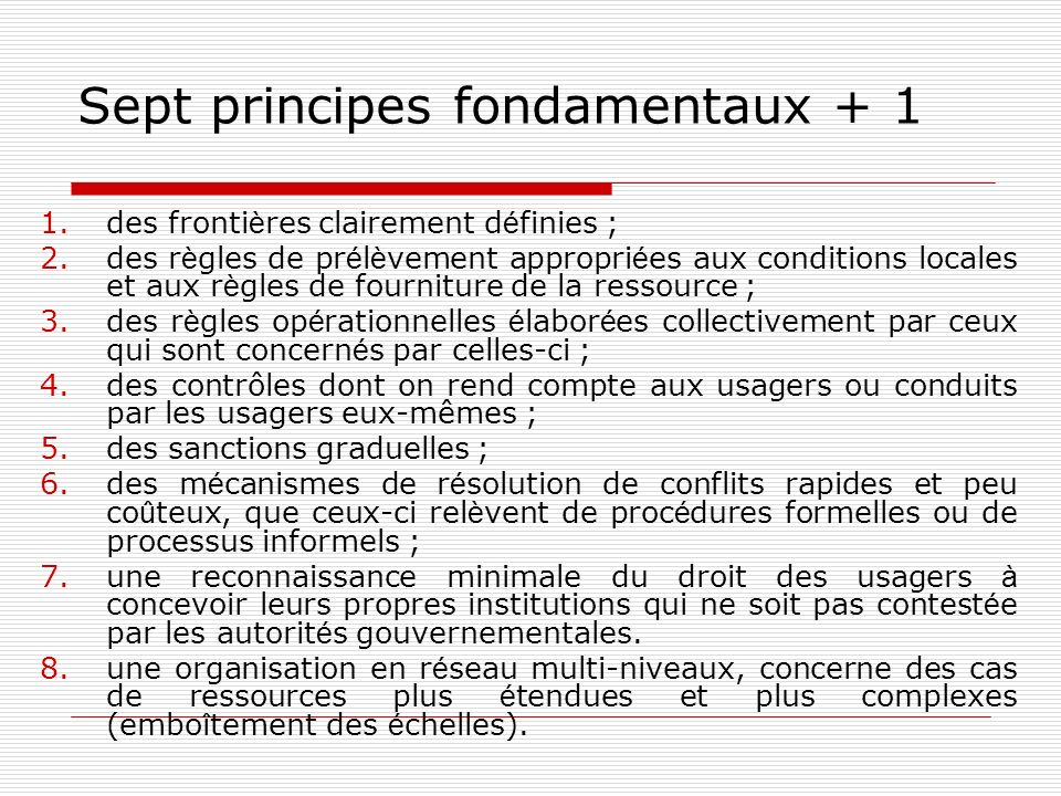Sept principes fondamentaux + 1