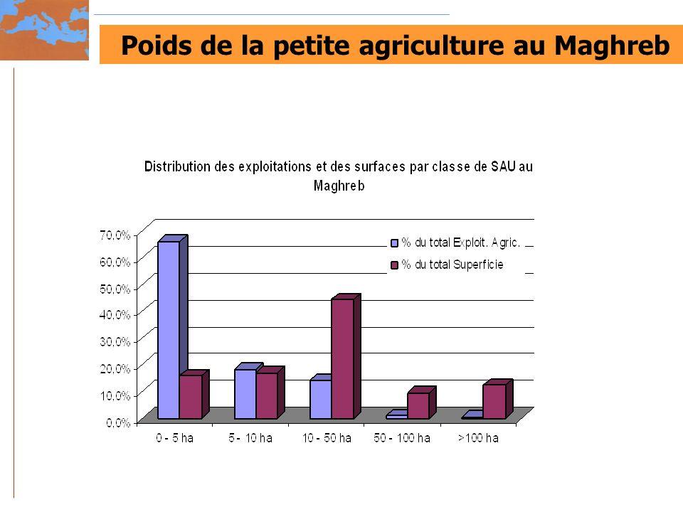 Poids de la petite agriculture au Maghreb