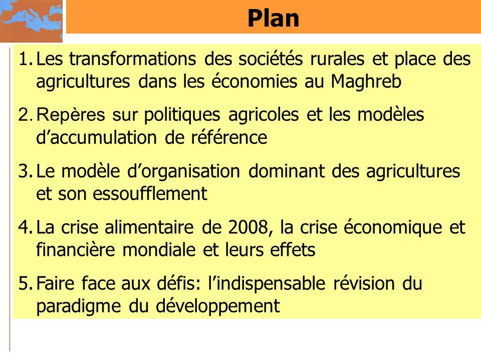 Plan Les transformations des sociétés rurales et place des agricultures dans les économies au Maghreb.