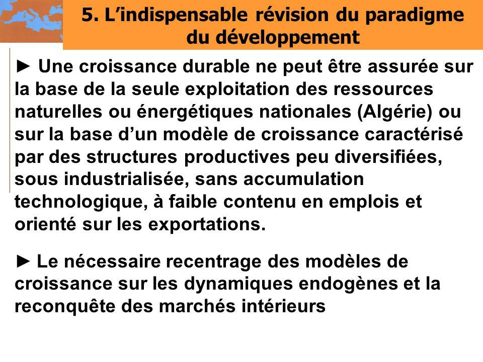 5. L'indispensable révision du paradigme du développement