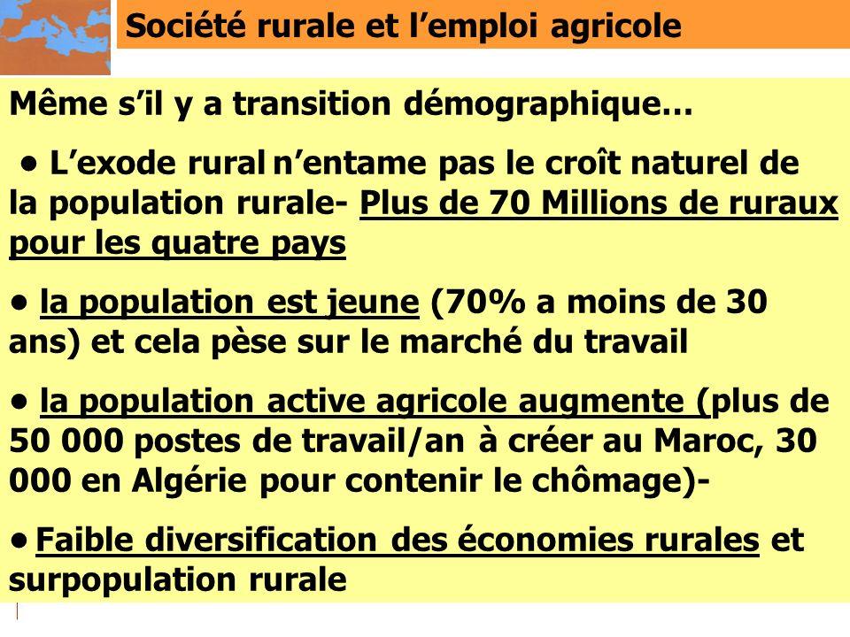 Société rurale et l'emploi agricole