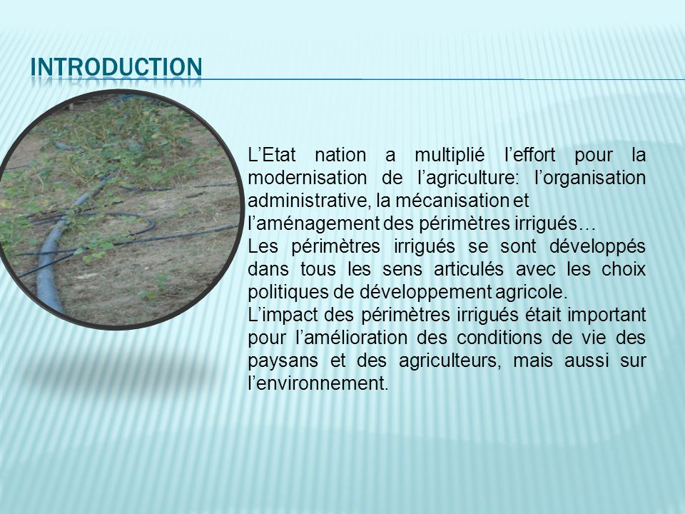 Introduction L'Etat nation a multiplié l'effort pour la modernisation de l'agriculture: l'organisation administrative, la mécanisation et.