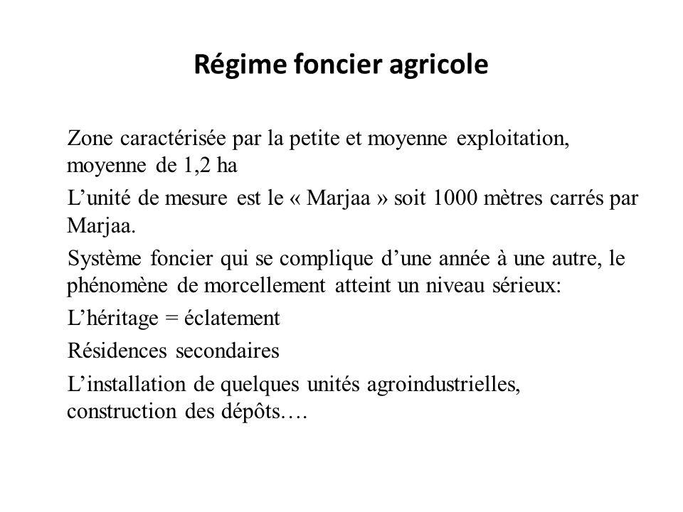 Régime foncier agricole