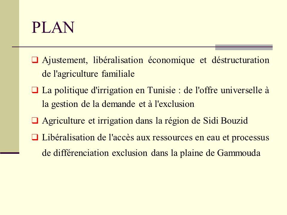 Coloque PLAN. Ajustement, libéralisation économique et déstructuration de l agriculture familiale.