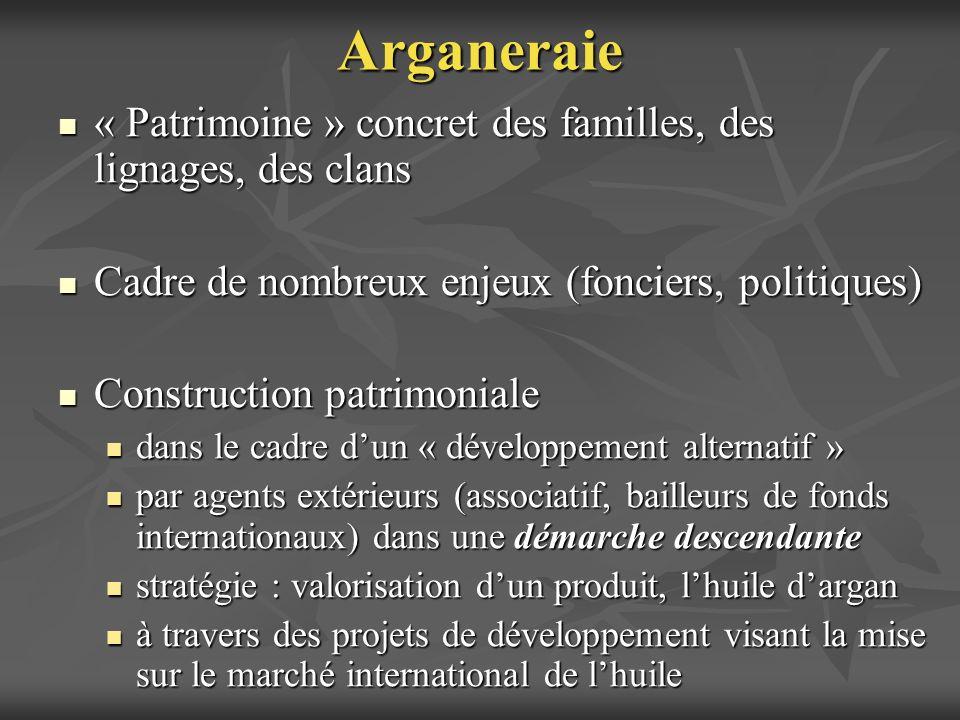 Arganeraie« Patrimoine » concret des familles, des lignages, des clans. Cadre de nombreux enjeux (fonciers, politiques)