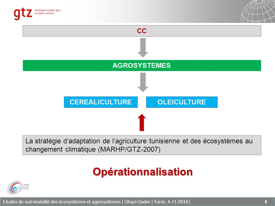 Opérationnalisation CC AGROSYSTEMES CEREALICULTURE OLEICULTURE