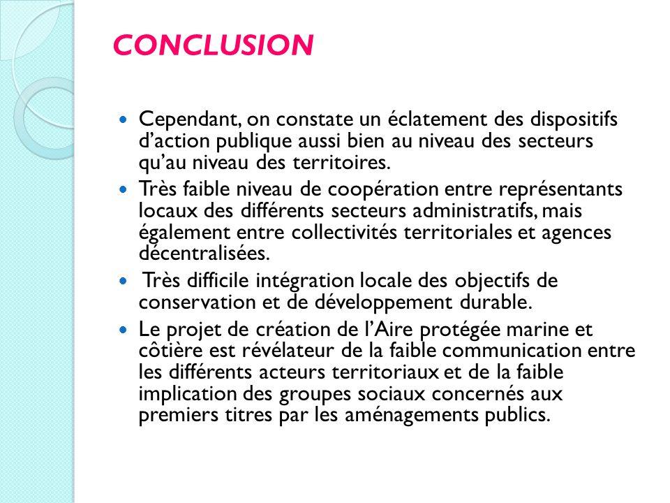 CONCLUSION Cependant, on constate un éclatement des dispositifs d'action publique aussi bien au niveau des secteurs qu'au niveau des territoires.