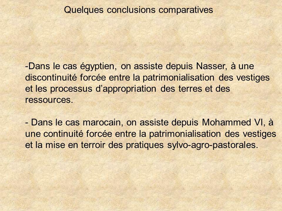 Quelques conclusions comparatives