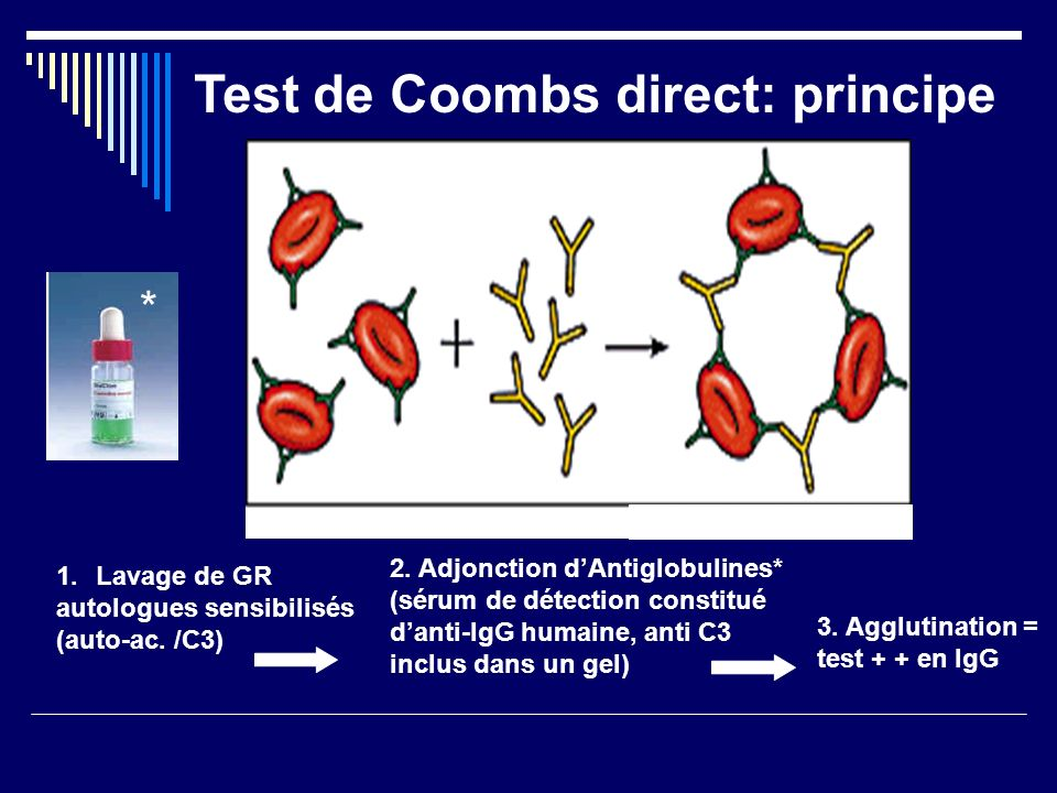 Test de Coombs direct: principe