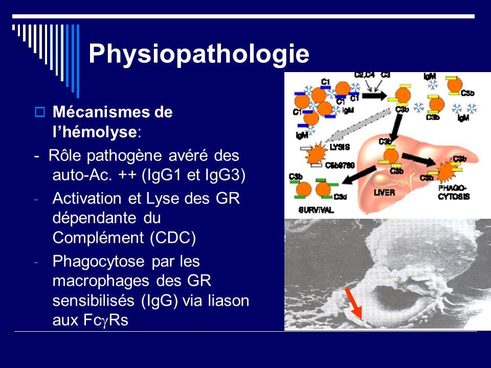 Physiopathologie Mécanismes de l'hémolyse:
