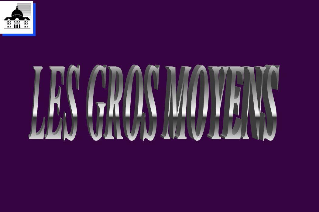 LES GROS MOYENS