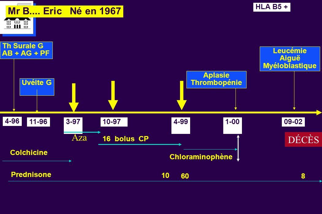 Leucémie Aiguë Myéloblastique