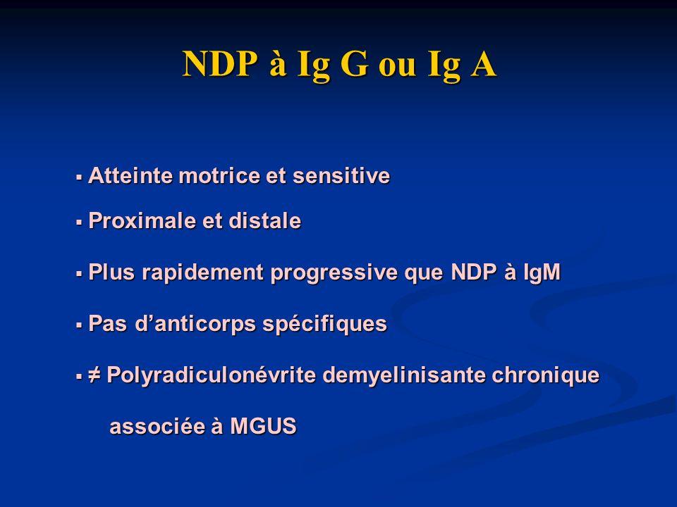 NDP à Ig G ou Ig A Atteinte motrice et sensitive Proximale et distale