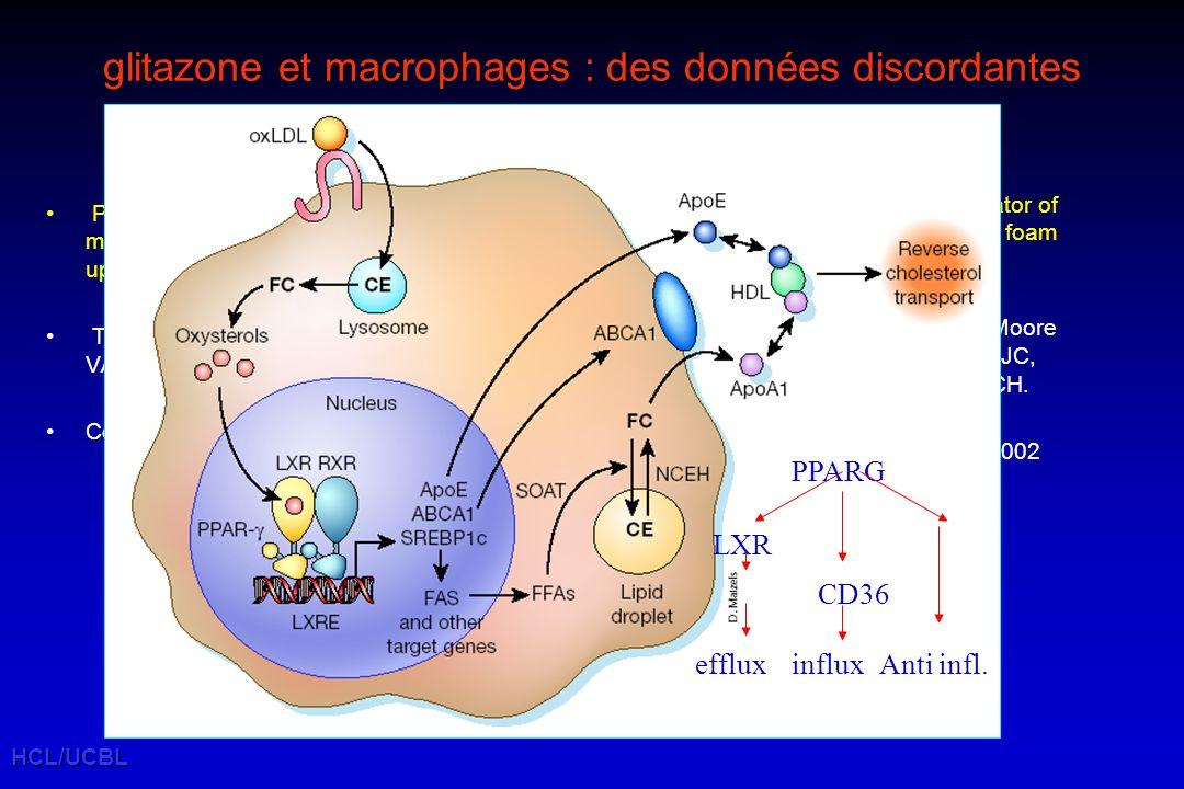 glitazone et macrophages : des données discordantes