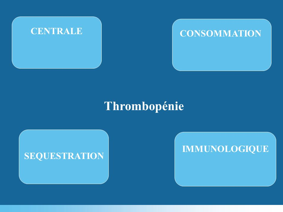 CENTRALE CONSOMMATION Thrombopénie IMMUNOLOGIQUE SEQUESTRATION