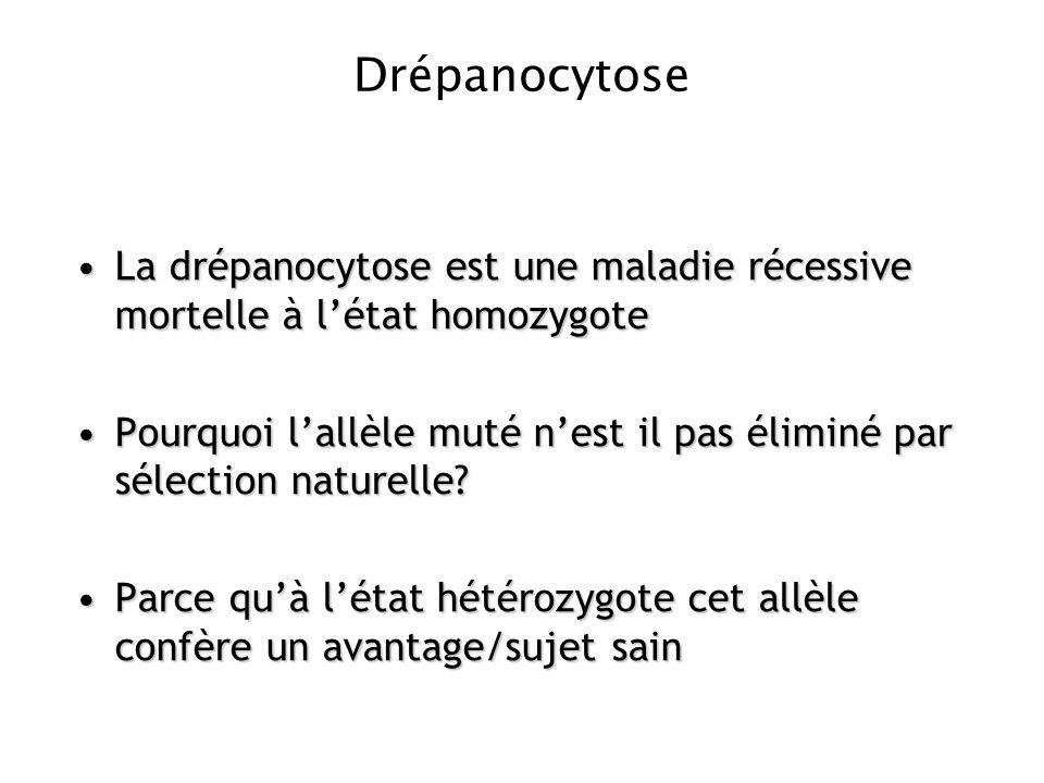 Drépanocytose La drépanocytose est une maladie récessive mortelle à l'état homozygote.