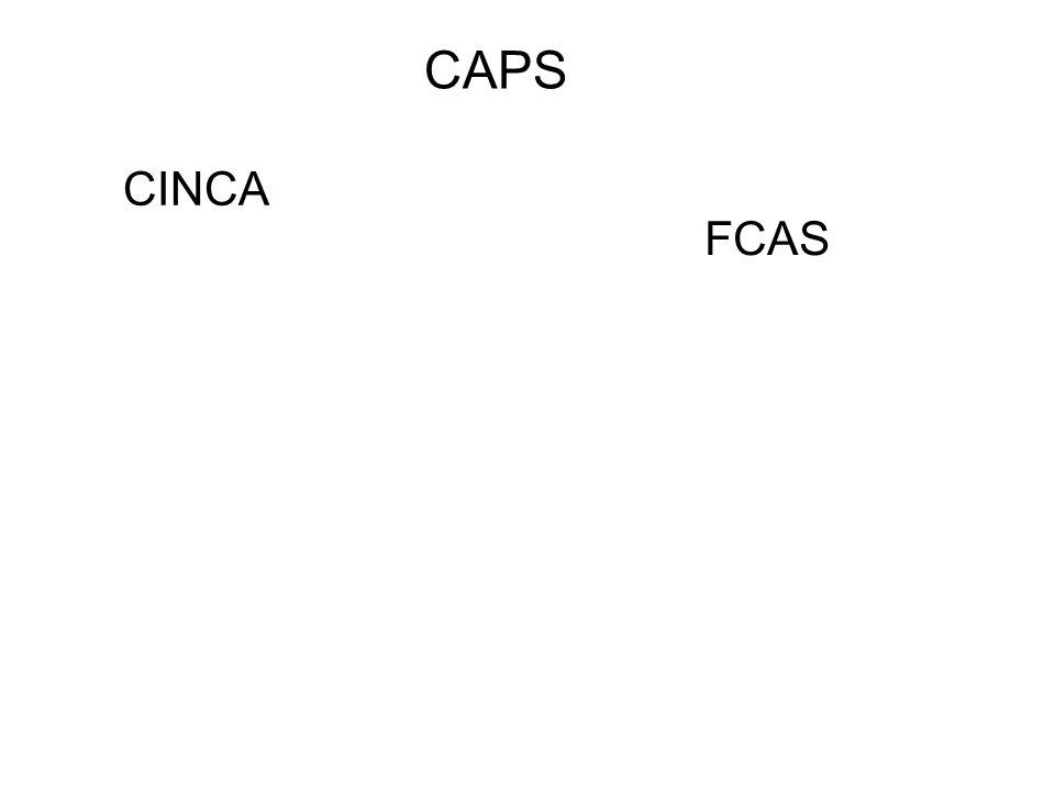 CAPS CINCA FCAS