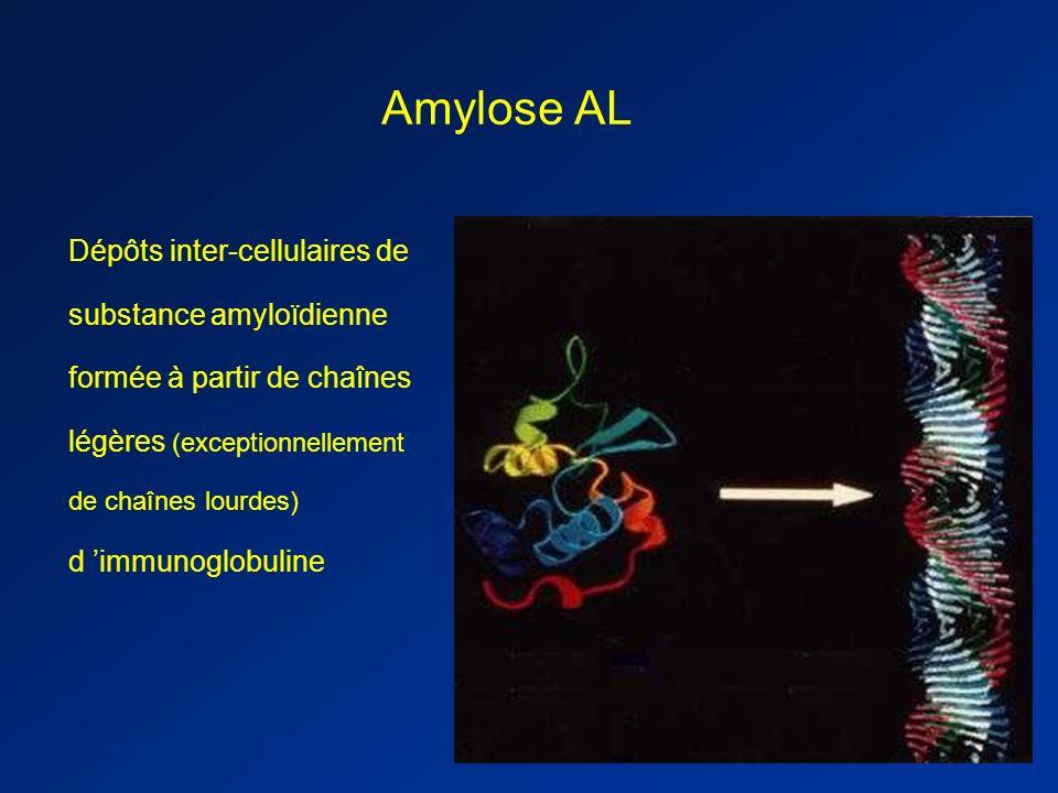 Amylose AL