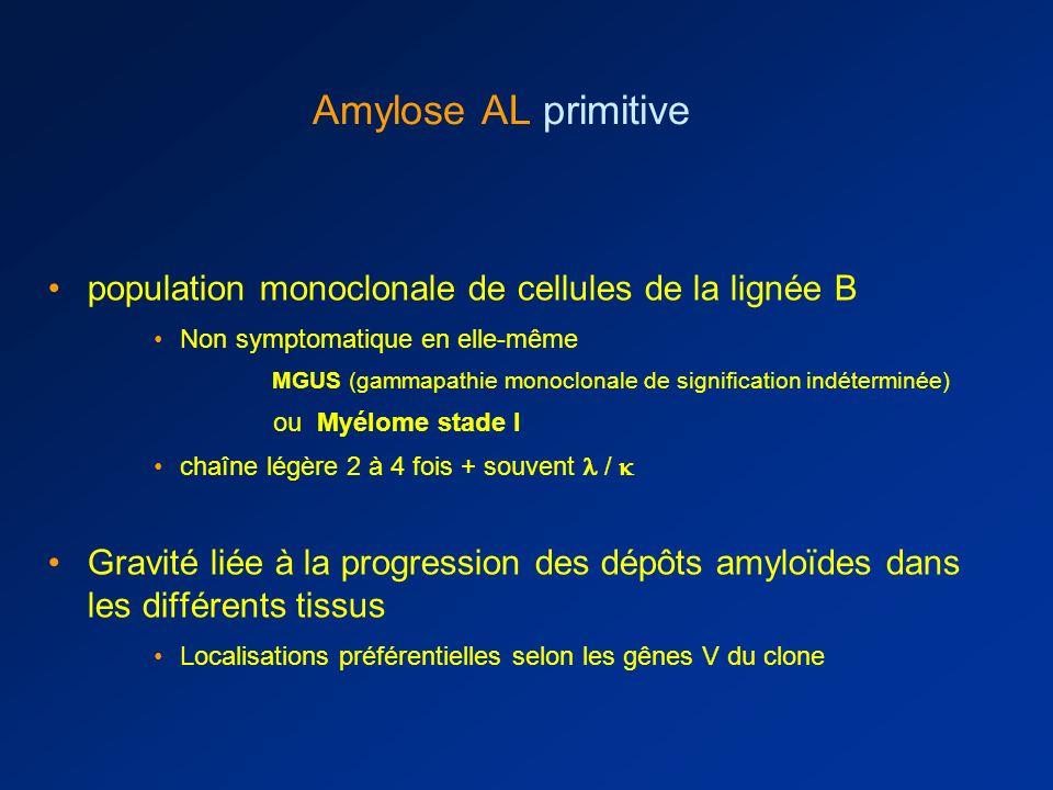 Amylose AL primitive population monoclonale de cellules de la lignée B