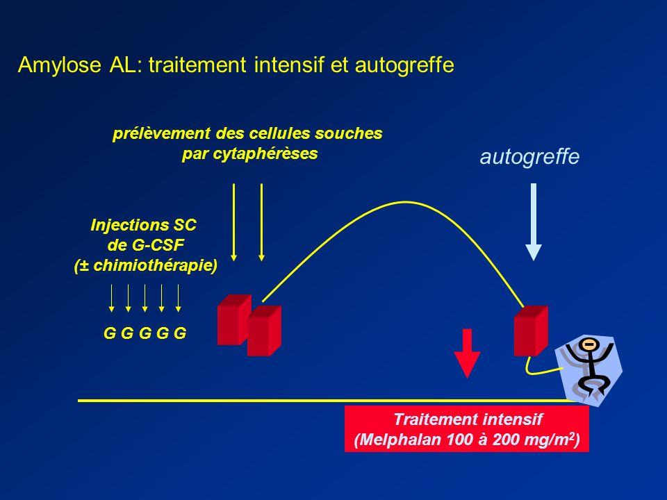 Amylose AL: traitement intensif et autogreffe