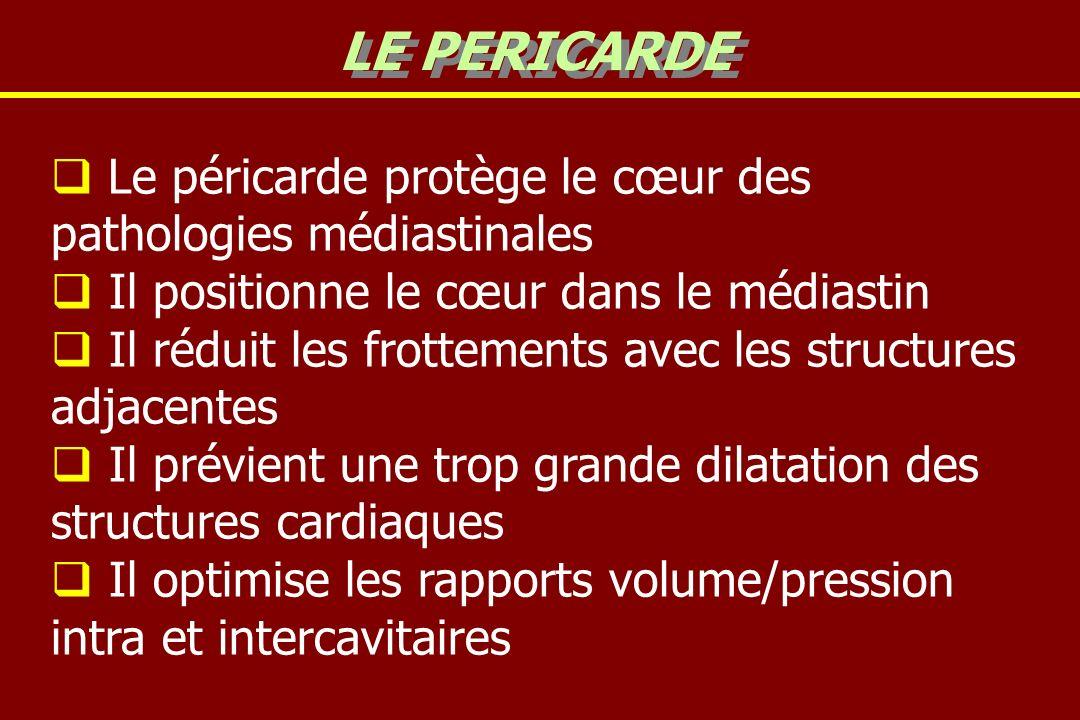 LE PERICARDE Le péricarde protège le cœur des pathologies médiastinales. Il positionne le cœur dans le médiastin.