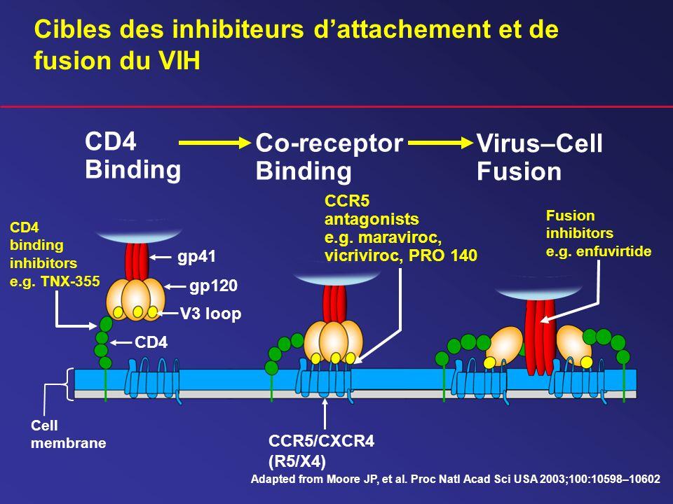 Cibles des inhibiteurs d'attachement et de fusion du VIH