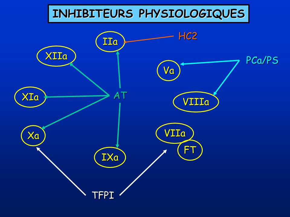 INHIBITEURS PHYSIOLOGIQUES