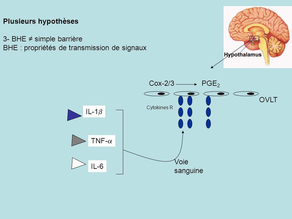 BHE : propriétés de transmission de signaux