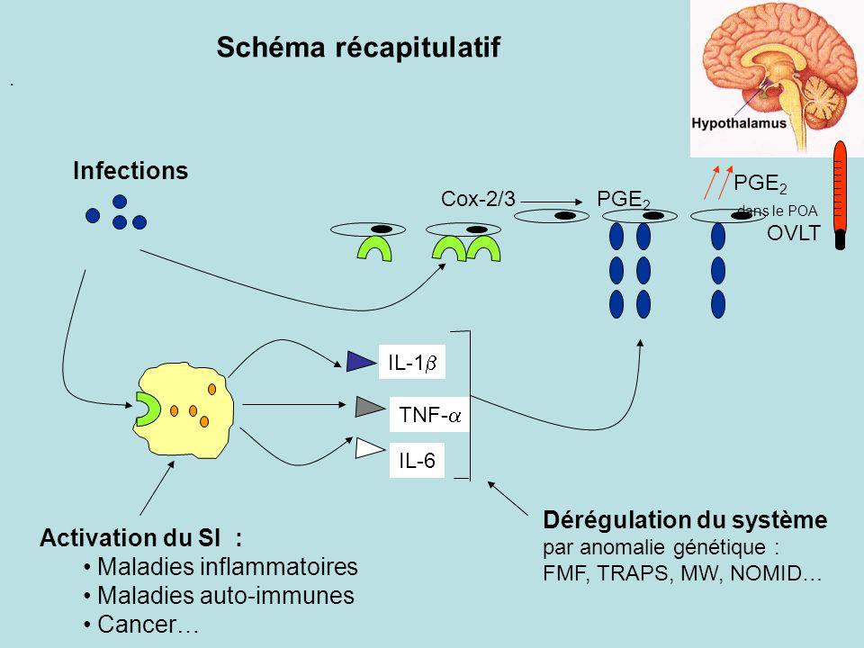 Schéma récapitulatif Infections Dérégulation du système