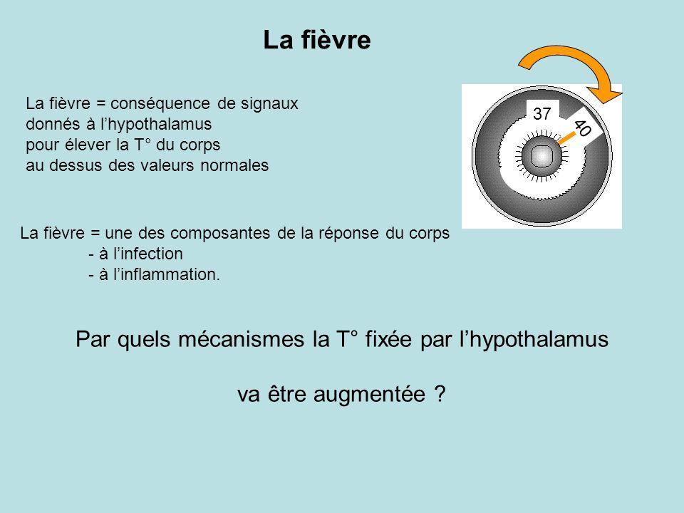 Par quels mécanismes la T° fixée par l'hypothalamus
