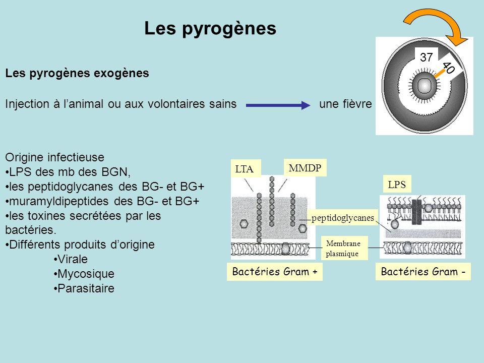Les pyrogènes Les pyrogènes exogènes 37 40
