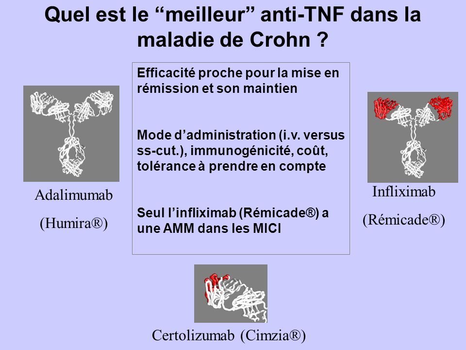 Quel est le meilleur anti-TNF dans la maladie de Crohn